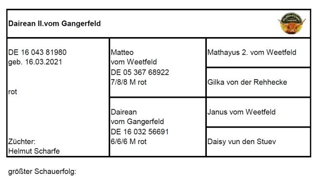 Pedigree Dairean II. vom Gangerfeld