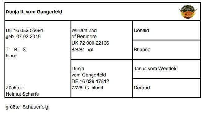 Pedigree Dunja II. vom Gangerfeld