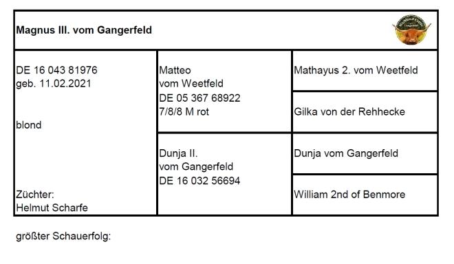 Pedigree Magnus III. vom Gangerfeld
